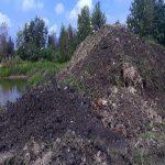 فروش عمده خاک باغچه و گیاهان آپارتمانی