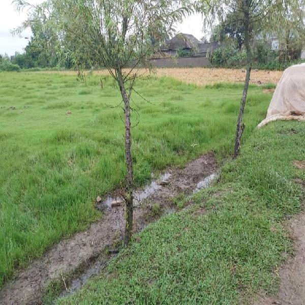 زمین مسکونی کشاورزی