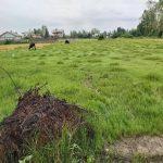 زمین مسکونی کشاورزی با مجوز و مدارک کامل موقعیت مکانی عالی
